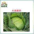 【綠藝家】B08.大高麗菜種子種子50顆...