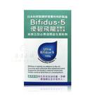 Bifidus-5 優碧飛龍 益生菌 150g