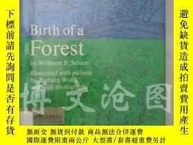 二手書博民逛書店Birth罕見of A Forest【大32開精裝 英文原版】(