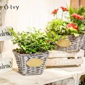 olvy歐拉復古手工編織花籃田園藤編多肉花盆花器家居裝飾擺件籃子WD 雙十二全館免運