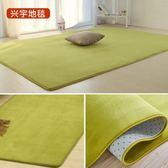 珊瑚絨簡約現代臥室滿鋪可愛客廳茶幾墊沙發榻榻米床邊地毯可定制【限時八八折】