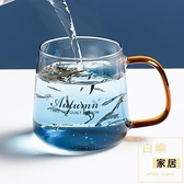 玻璃水杯帶把創意冷飲杯子潮流可愛家用咖啡果汁杯耐熱【白嶼家居】
