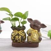 花瓶 創意茶寵擺件茶盤配件茶道六君子可愛小豬水培插花瓶水養綠蘿花器