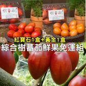 綜合樹蕃茄鮮果600g x2入免運組