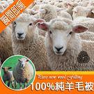 【紛飛】100立即發熱純新羊毛被-單人