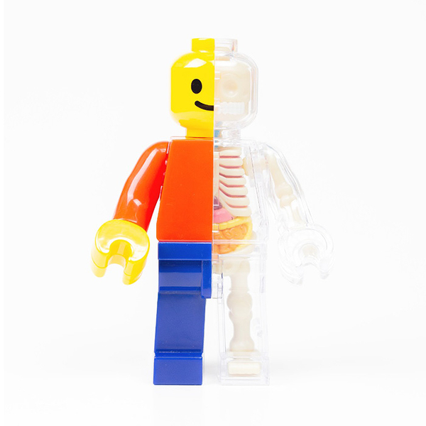 4D MASTER Brick Man 解剖公仔 積木人偶 基本色 【鯊玩具Toy Shark】