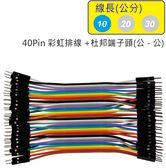 40Pin彩虹排線 + 雙頭杜邦端子 公頭 - 公頭( 線長10公分 )