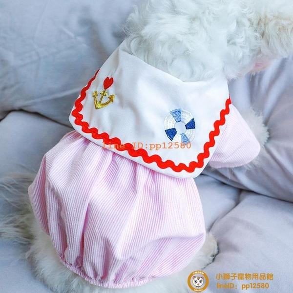 寵物雪納瑞比熊博美情侶裝貓咪貴賓泰迪春夏薄款襯衫舒適款小型犬小狗狗【小獅子】