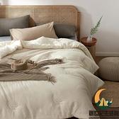 水洗棉大豆被子四季通用被芯單人棉被加厚保暖秋冬被【創世紀生活館】