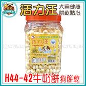 *~寵物FUN城市~*《活力汪 犬用健康點心》H44-42牛奶餅(牛奶+鈣)500g (狗餅乾,零食)