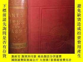 二手書博民逛書店1898年罕見ANTS, BEES AND WASPS BY J