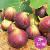 【鮮食優多】名山間・天然紅土無花果2斤(12~18顆)