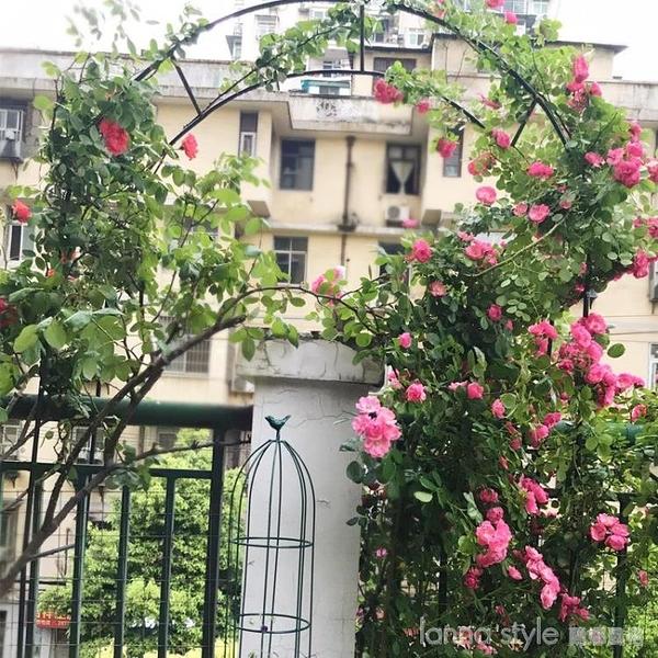 鐵藝戶外葡萄引路架拱門花架薔薇爬藤架子月季絲瓜拱形攀爬花支架 年終大促 YTL