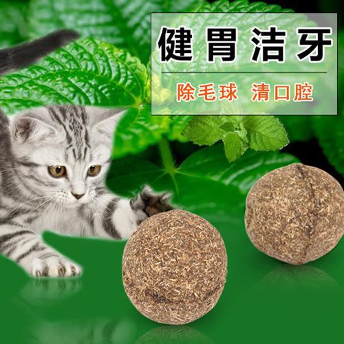 貓薄荷球 主子的最愛 (單顆入)