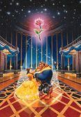 【拼圖總動員 PUZZLE STORY】魔法之愛 日系/Tenyo/迪士尼/美女與野獸/108P