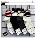 韓國東大門進口批發秋冬新品純色條紋棉襪時尚簡約男士中筒襪子潮
