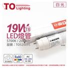 TOA東亞 LTU40P-19AAD LED T8 19W 4呎 5700K 白光 全電壓 日光燈管 _ TO520095