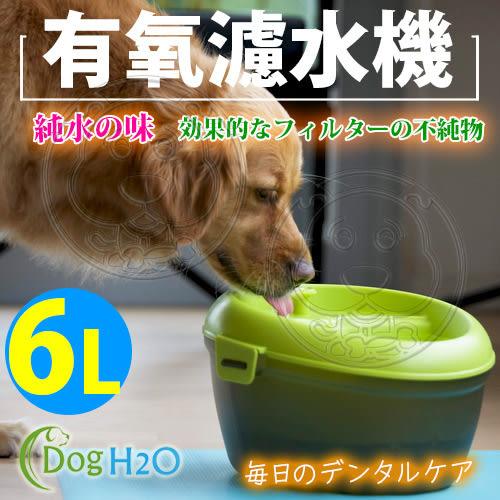 【zoo寵物商城】Dog&Cat H2O》DC-06有氧濾水機飲水器6L-綠54292大型犬專用
