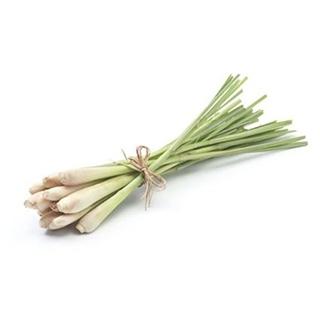 Visakha - 檸檬草 Lemongrass  單方精油 (10ml)