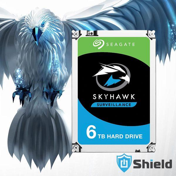 Shield神盾安控|全新附發票|Seagate監控鷹3.5吋6TB監控專用硬碟|ST6000VX0023|3年保固到府收送