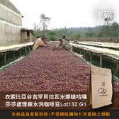 【咖啡綠商號】衣索比亞谷吉罕貝拉瓦米娜鎮哈囉莎莎處理廠水洗咖啡豆Lot132 G1(半磅)