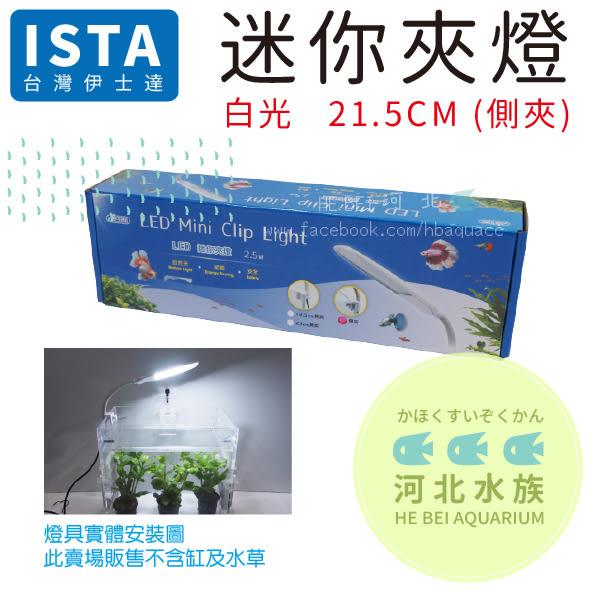 [ 河北水族 ] 台灣 ISTA 伊士達 【迷你夾燈 蛇管 21.5CM (側夾) 】IL-463 全白 燈