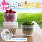 ✿現貨 快速出貨✿【小麥購物】居家保鮮盒 收納盒 冰箱收納盒 瀝水盒 水果保鮮盒 收納【G158】