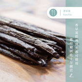 【味旅嚴選】|香草莢| Vanilla|約17cm