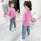 童裝女童短袖T恤中大童夏裝百搭上衣兒童洋氣時尚半袖女孩體恤衫 至簡元素