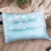 R.Q.POLO 南法花卉系列_艾薇花園 可水洗靠墊午安枕