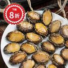 鮑魚 每盒1公斤 -江爸爸漁舖