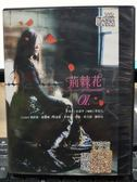 挖寶二手片-S41-020-正版DVD-韓劇【荊棘花 全120集12碟 國韓語】-張新英 姜慶俊 徐道營