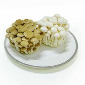 【陽光農業】綜合菇(鴻喜菇、美白菇) (約200g/包)