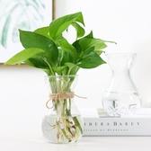 創意簡約水培植物玻璃花瓶花盆透明風信子水養綠蘿 觀音竹插花瓶 9號潮人館