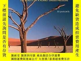 二手書博民逛書店Our罕見Fragile World Postcard BookY255562 Wells, Troth (e