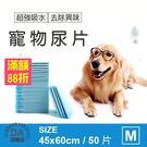 裸包 寵物尿片 50片 45*60cm 寵物 尿布 狗用 尿墊 除臭 吸水 棉質柔軟(V50-1544)