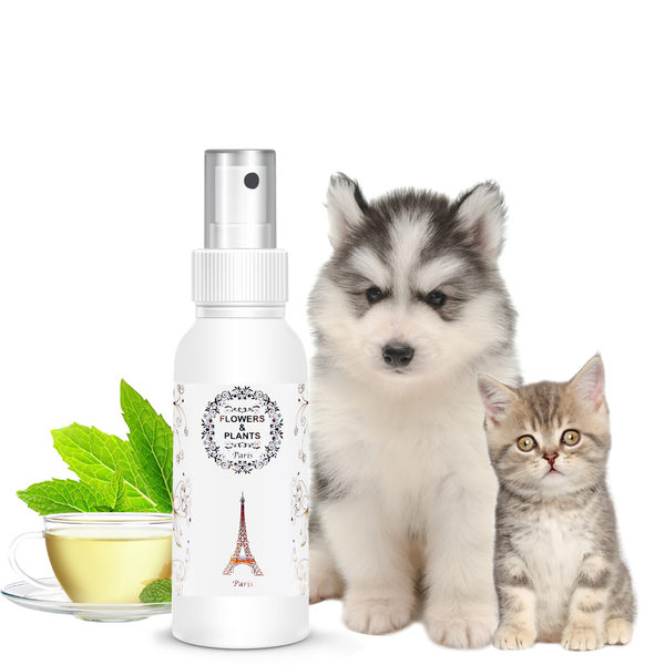 【愛戀花草】綠茶精油 護膚除臭寵物香水 100ML