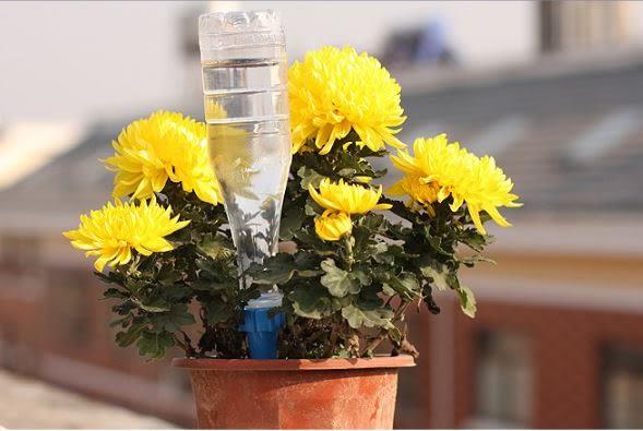 自動澆花器滲水器灑水器灌溉器4枚入 39元