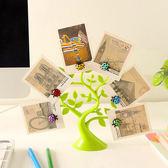 ♚MY COLOR♚創意瓢蟲磁鐵架 磁性 冰箱 鐵質 吸附 留言貼 裝飾 擺設 名片 紙條 立體【L155】