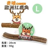 *KING WANG*CHIKEN奇啃 歐洲紅鹿角L 90g‧天然潔牙骨 100%自然脫落‧狗零食