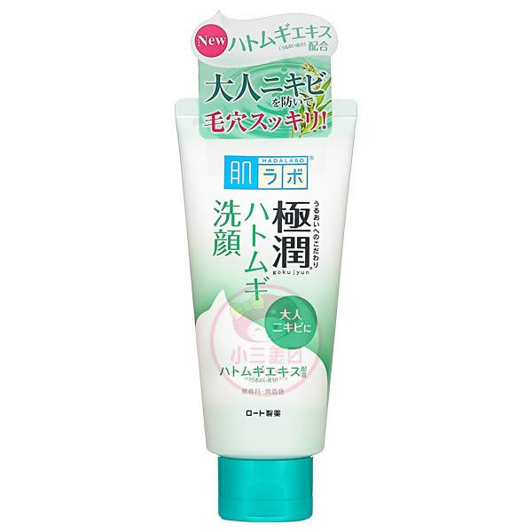 ROHTO 肌研 極潤薏仁保濕潔顏乳(100g)【小三美日】