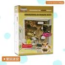 【麗利寶】2752 愛鼠迷宮 寵物屋寵物屋 寵物用品 寵物運動 寵物玩具 寵物鼠 黃金鼠 倉鼠 鼠用品