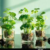如一花開簡約家居模擬綠植花卉套裝室內客廳擺件玻璃花瓶假草盆栽 韓語空間