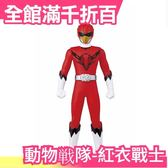 空運 日本 日版原裝 萬代BANDAI 動物戰隊 紅衣戰士 立方鷹【小福部屋】