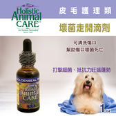 【毛麻吉寵物舖】Azmira 愛獅馬【壞菌走開滴劑】1oz 犬貓/寵物保健
