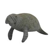 【永曄】collectA 柯雷塔A-英國高擬真動物模型-海洋生物-海牛