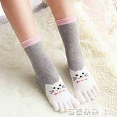 五指襪女 可愛五指襪 秋冬卡通女士分腳趾襪 全純棉五趾襪 中筒襪 舒適 芭蕾朵朵