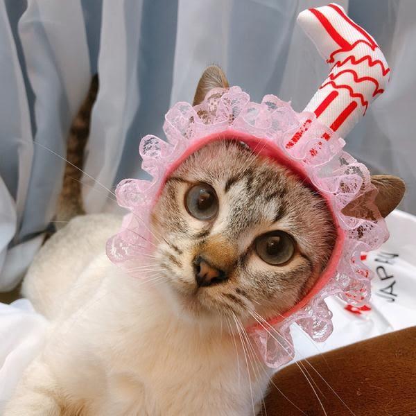 春季上新 貓咪狗狗吸管頭飾吸貓頭套可愛惡搞寵物生日帽頭箍帽子圣誕飾品