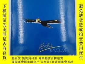 二手書博民逛書店colours罕見of the sky 非英文 見圖Y19139 tourism authority of