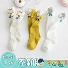 3雙裝 兒童長筒襪秋冬純棉過膝中筒寶寶不勒腿襪子【淘嘟嘟】